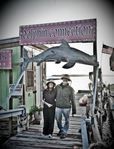 Dolphin Connection